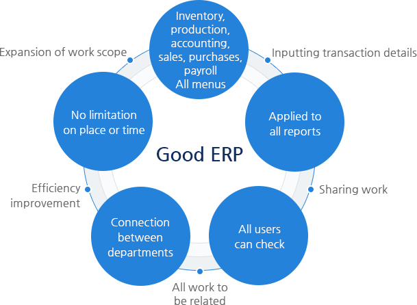 What is a good ERP?